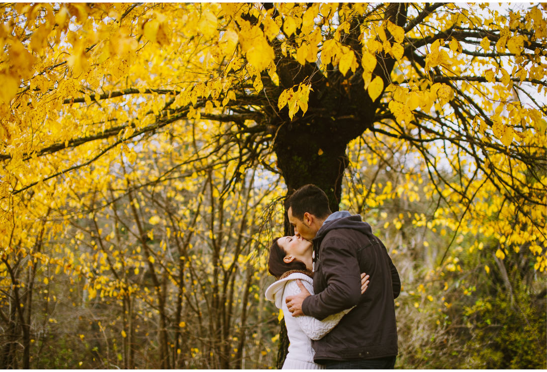 kiss under the yellow tree in fuzine engagement session