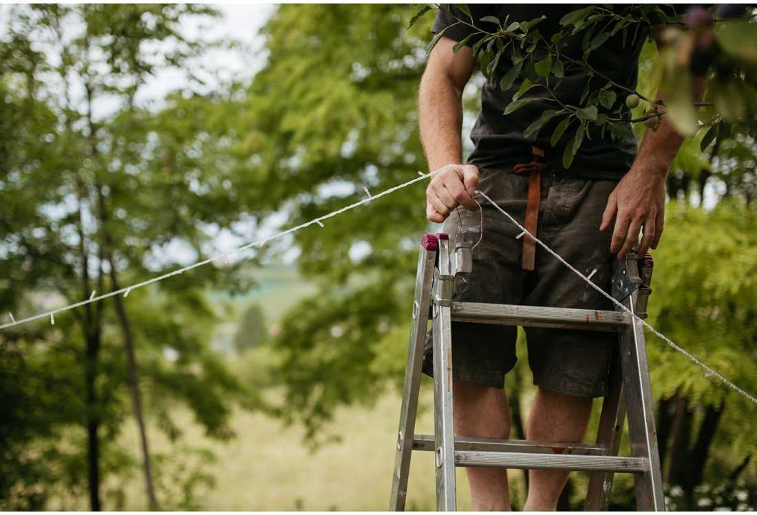 man standing on ladders in the backyard