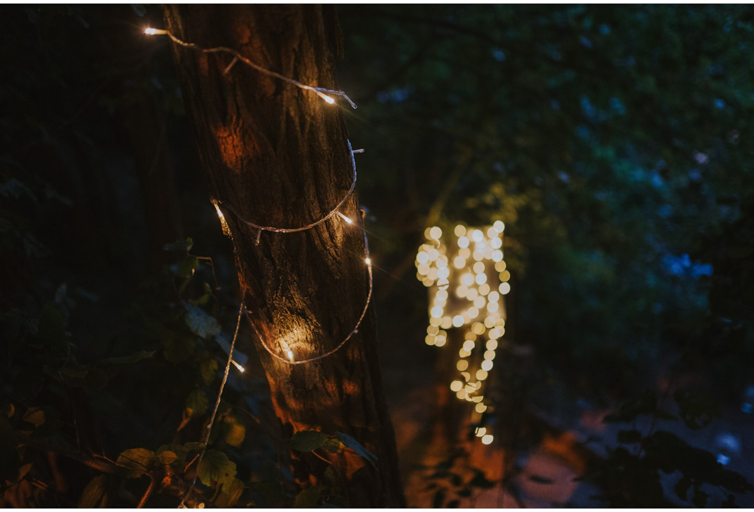 backyard wedding party decoration lights on a tree